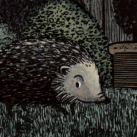 <b>Northumberland Wildlife Trust</b> - Illustrations for The Loneliest Hedgehog - 1 of 2