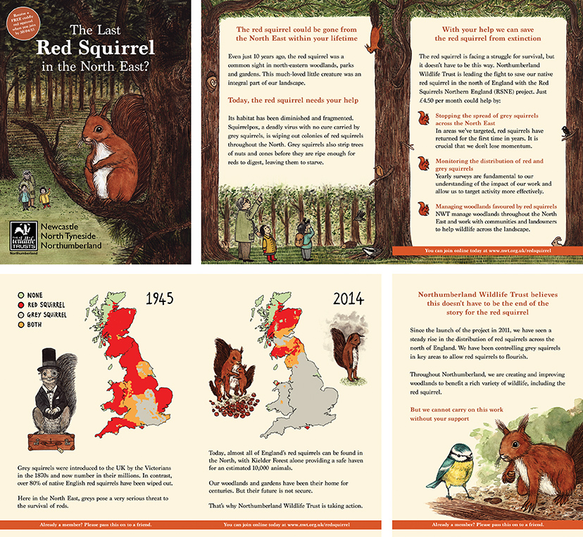 <b>Northumberland Wildlife Trust</b> - Red Squirrel Appeal Booklet 2015 - 2 of 2
